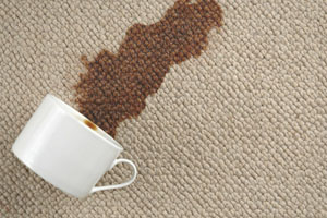 Carpet Steam Cleaning, Stain Removal Couch, Loveseat and Upholstery Cleaning in Edmonds, Washington