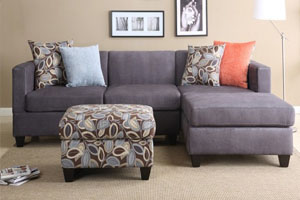 Carpet Steam Cleaning, Couch, Loveseat and Upholstery Cleaning in Edmonds, Washington