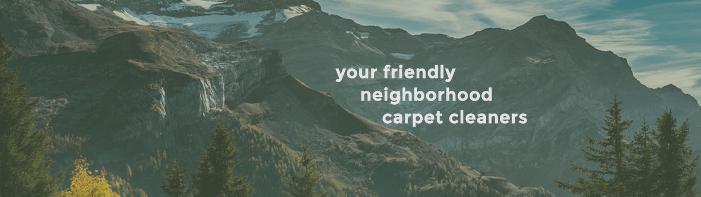 Carpet Cleaning / Steam Cleaning, Couch, Loveseat and Upholstery Cleaning in Edmonds, Washington